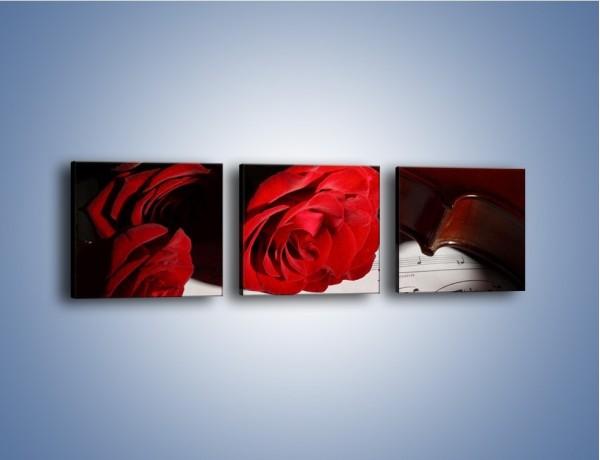 Obraz na płótnie – Sonety pisane miłością do róż – trzyczęściowy K906W1