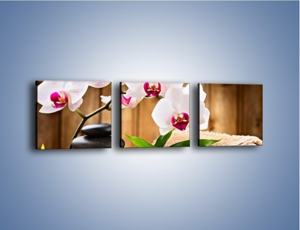 Obraz na płótnie – Ręczniki świece i kwiaty – trzyczęściowy K914W1