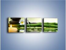 Obraz na płótnie – Bambus i źródło wody – trzyczęściowy K930W1
