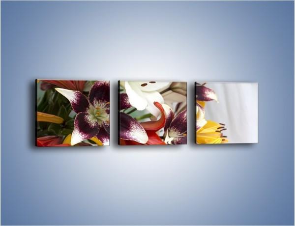 Obraz na płótnie – Wiązanka z samych lilii – trzyczęściowy K945W1