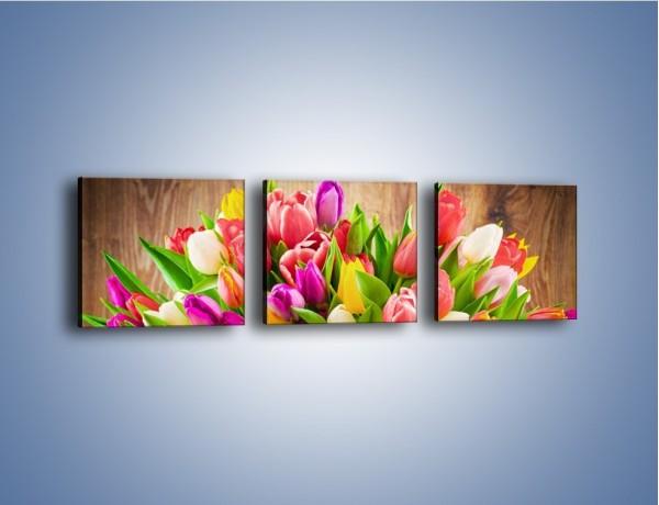 Obraz na płótnie – Skrzynia w tulipanach – trzyczęściowy K955W1
