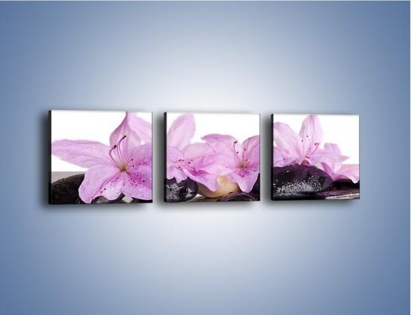 Obraz na płótnie – Lila kwiaty w mokrym klimacie – trzyczęściowy K957W1