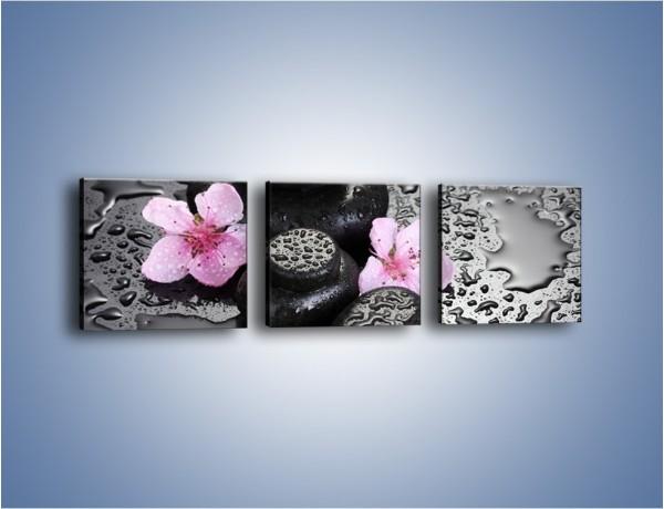 Obraz na płótnie – Kwiaty i deszczowe plamy – trzyczęściowy K971W1
