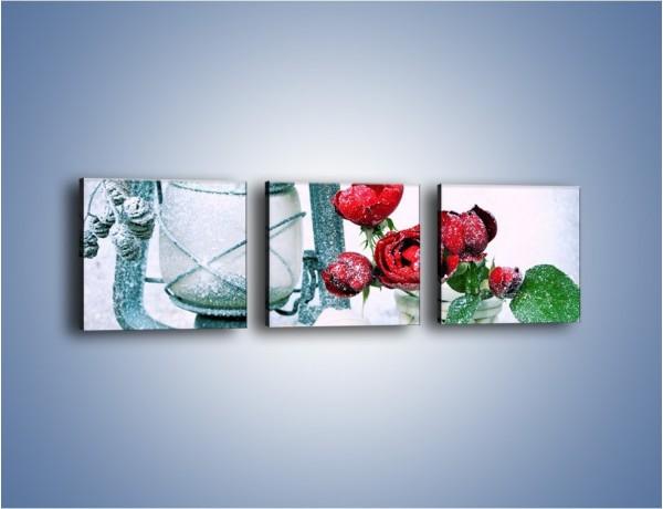 Obraz na płótnie – Zimowe dodatki i kwiaty – trzyczęściowy K987W1