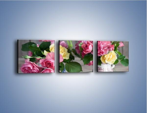 Obraz na płótnie – Róże ścięte nożycami – trzyczęściowy K992W1