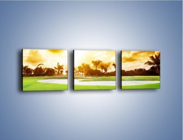 Obraz na płótnie – Zielony dywan i drzewa – trzyczęściowy KN1004W1
