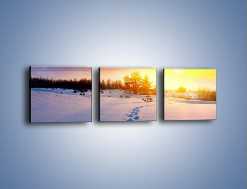 Obraz na płótnie – Ślady na śnieżnym puchu – trzyczęściowy KN1015W1
