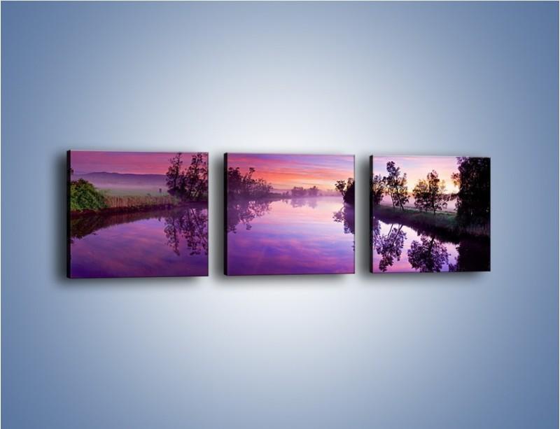 Obraz na płótnie – Fiolet w wodzie i na niebie – trzyczęściowy KN1046W1