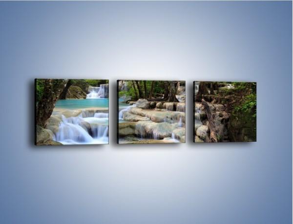 Obraz na płótnie – Wodny leśny świat – trzyczęściowy KN1057W1