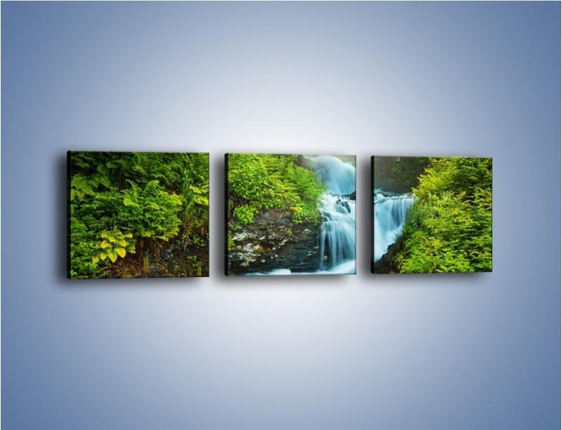 Obraz na płótnie – Spływ wodny i zieleń – trzyczęściowy KN1069W1