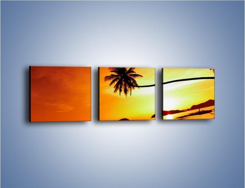 Obraz na płótnie – Palma o zachodzie słońca – trzyczęściowy KN1077W1