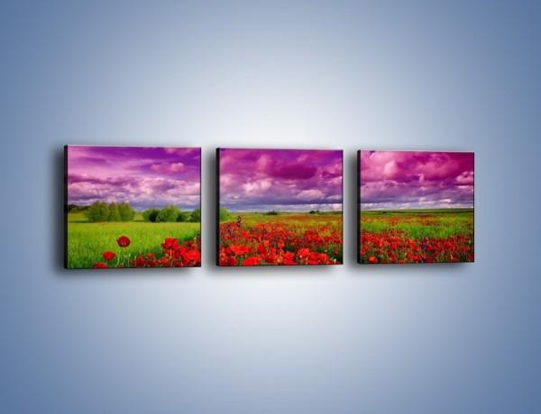 Obraz na płótnie – Maki nad fioletowymi chmurami – trzyczęściowy KN1079AW1