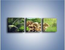Obraz na płótnie – Bogata roślinność nad wodą – trzyczęściowy KN1082AW1