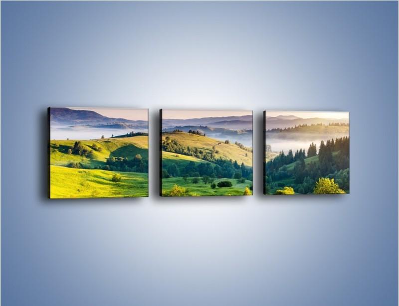 Obraz na płótnie – Tylko zieleń i góry – trzyczęściowy KN1084W1