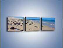 Obraz na płótnie – Całe morze kamyczków – trzyczęściowy KN1086AW1