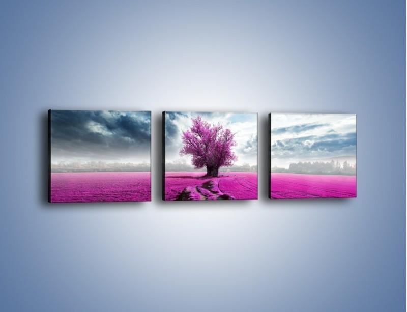 Obraz na płótnie – Lawendowe drzewo – trzyczęściowy KN1093W1