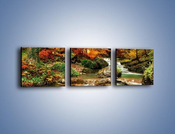 Obraz na płótnie – Jesienne kolory w lesie – trzyczęściowy KN1094AW1