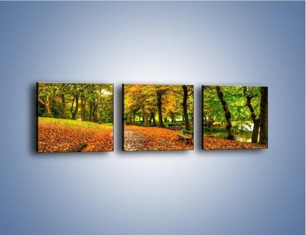 Obraz na płótnie – Piękna jesień w parku – trzyczęściowy KN1098AW1