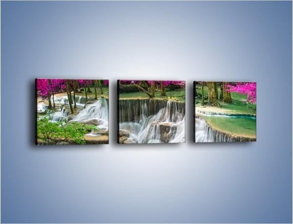 Obraz na płótnie – Purpurowy las i wodospad – trzyczęściowy KN1099W1