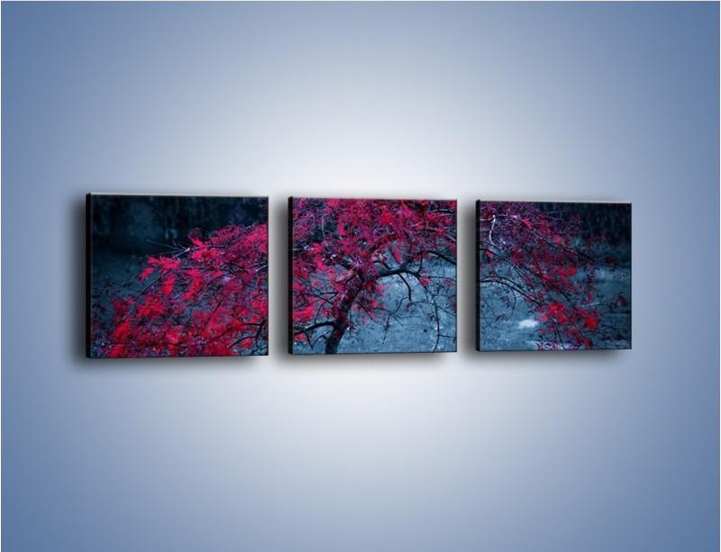 Obraz na płótnie – Czerwone płaczące drzewo – trzyczęściowy KN1101AW1