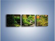 Obraz na płótnie – Alejka między kolorowymi drzewami – trzyczęściowy KN1113W1