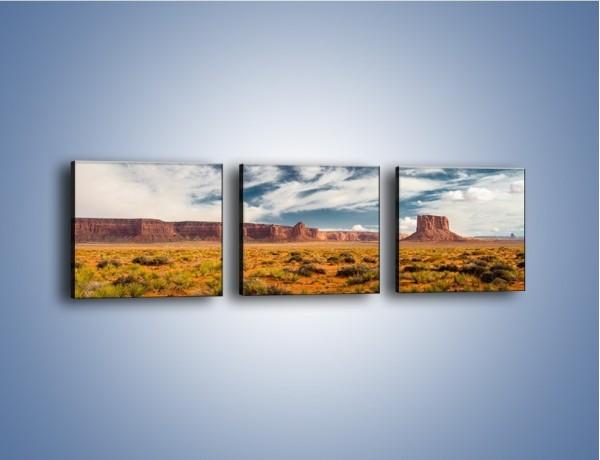 Obraz na płótnie – Kępy trawy na suchym piasku – trzyczęściowy KN1132AW1