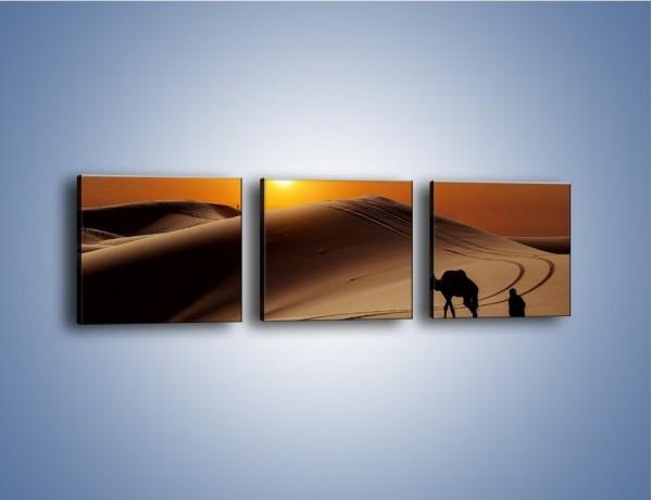 Obraz na płótnie – Człowiek wielbłąd i wydmy – trzyczęściowy KN1134AW1