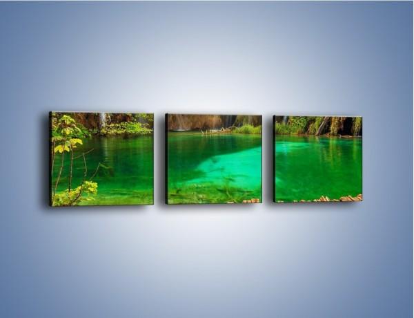 Obraz na płótnie – Zielone oczko wodne i drewno – trzyczęściowy KN1149AW1