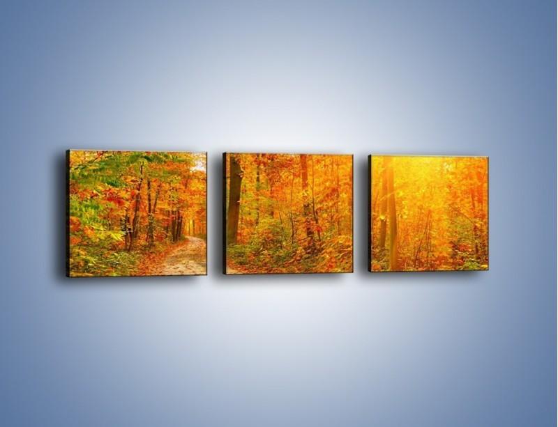 Obraz na płótnie – Leśną drużką jesienią – trzyczęściowy KN1163AW1