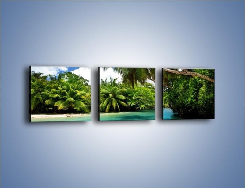 Obraz na płótnie – Rozłożone palmy i woda – trzyczęściowy KN1168AW1