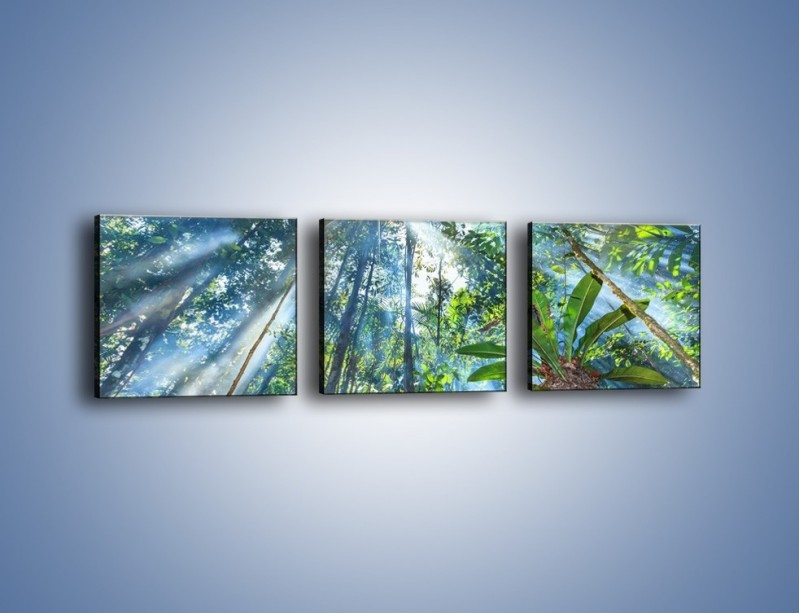 Obraz na płótnie – Dyzio marzyciel i drzewa – trzyczęściowy KN1189AW1