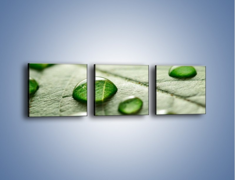 Obraz na płótnie – Korale z kropli wody – trzyczęściowy KN1192AW1