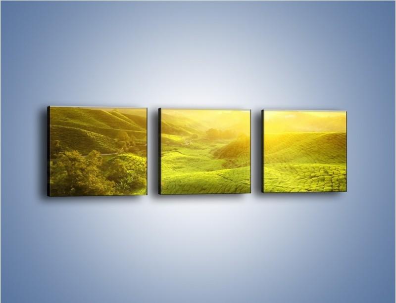 Obraz na płótnie – Zieleń w dolinie – trzyczęściowy KN1204AW1