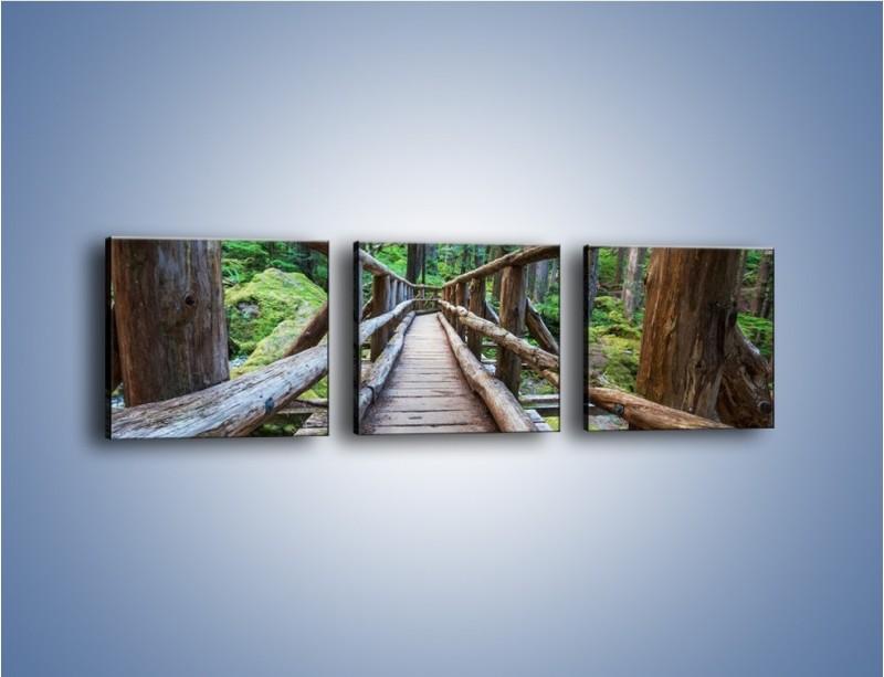 Obraz na płótnie – Mostek z drewnianych bali – trzyczęściowy KN1207AW1