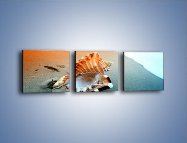 Obraz na płótnie – Szum morza w muszli – trzyczęściowy KN1217AW1