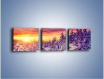 Obraz na płótnie – Choinki w śnieżnej szacie – trzyczęściowy KN1220AW1