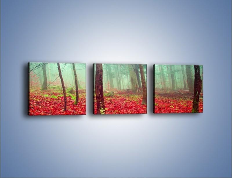 Obraz na płótnie – Drzewka na czerwonym dywanie – trzyczęściowy KN1222AW1