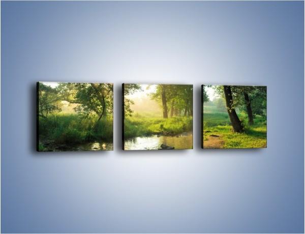 Obraz na płótnie – Mokradła w pięknej zieleni – trzyczęściowy KN1224AW1