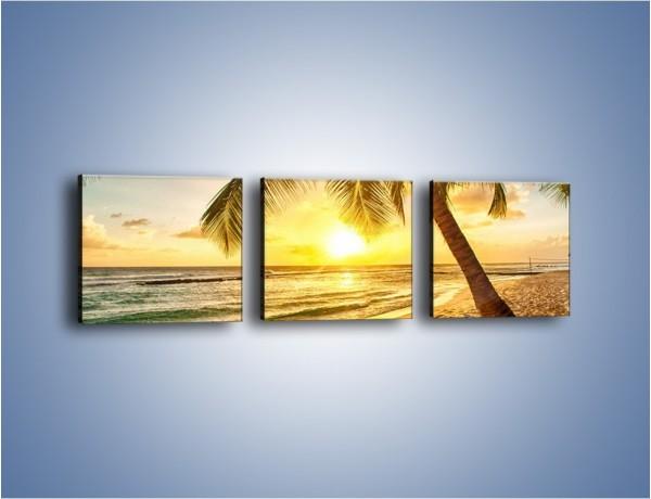 Obraz na płótnie – Spocząć pod palmą – trzyczęściowy KN1240AW1