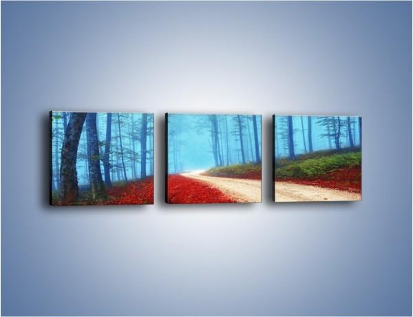 Obraz na płótnie – Rowerem przez las – trzyczęściowy KN1245AW1