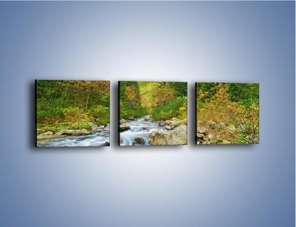 Obraz na płótnie – Płynie strumyk przez zielony las – trzyczęściowy KN1262AW1