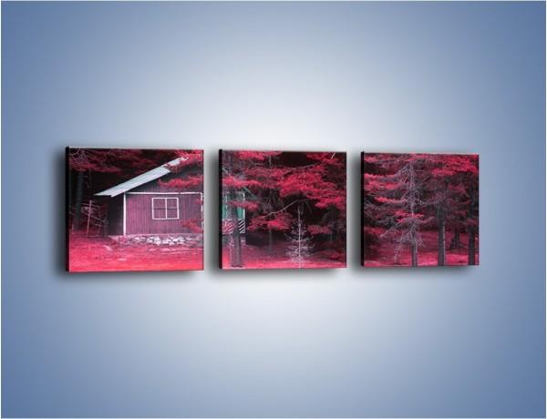 Obraz na płótnie – Kolor purpury w lesie – trzyczęściowy KN1266AW1