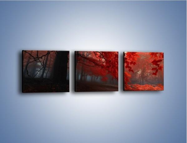 Obraz na płótnie – Smutna jesień lasu – trzyczęściowy KN1267AW1