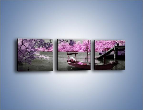 Obraz na płótnie – Krajobraz jak z japonii – trzyczęściowy KN1277AW1