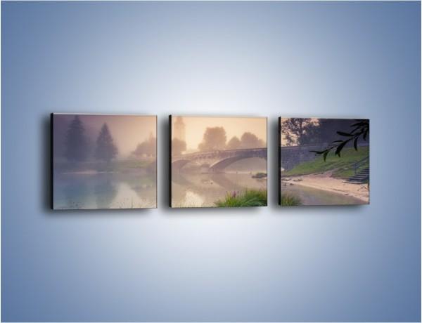 Obraz na płótnie – Widok we mgle – trzyczęściowy KN1284AW1