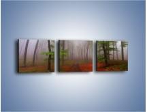 Obraz na płótnie – Budzący się lasek – trzyczęściowy KN1285AW1