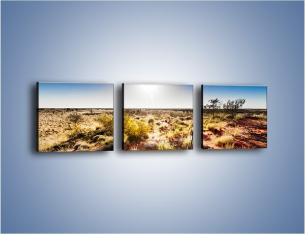 Obraz na płótnie – Spalona ziemia i roślinność – trzyczęściowy KN1287AW1