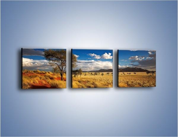 Obraz na płótnie – Czerwony piasek i roślinność – trzyczęściowy KN1290AW1