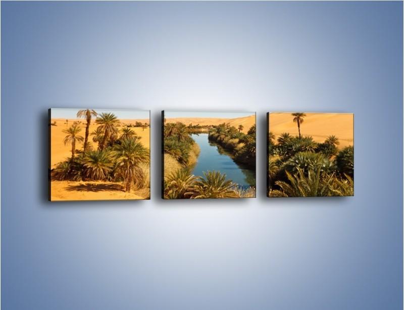 Obraz na płótnie – Woda woda na pustyni – trzyczęściowy KN1294AW1