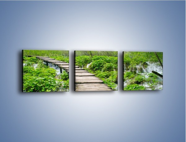 Obraz na płótnie – Dziki most i niepewność – trzyczęściowy KN1297AW1